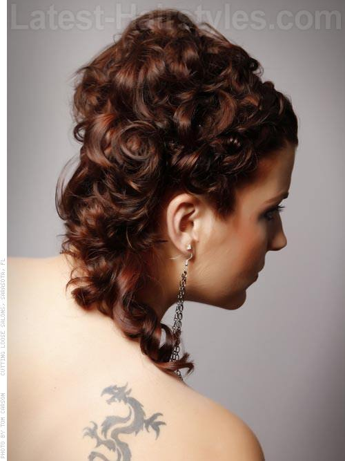 Updo Ambition Long Look with Braid and Curls - Back View