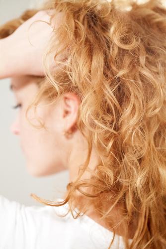 dry hair product ingredients