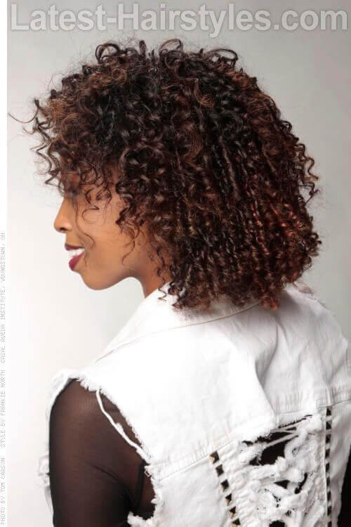 Chocolate Cinnamon Haircolor Side View