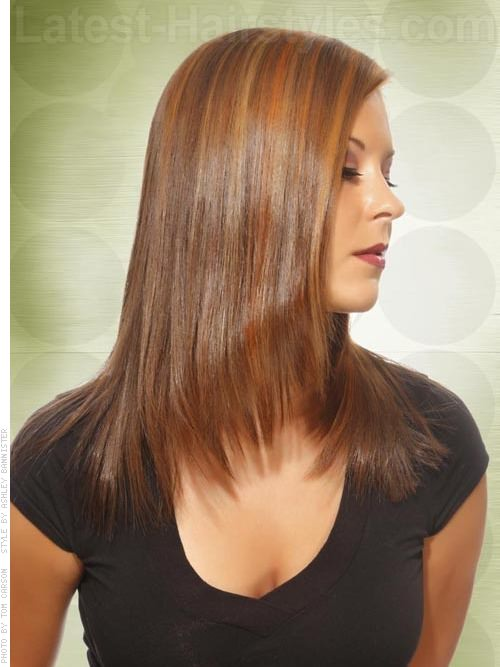 Long Heart-Shaped Face Shaping Layers Honey Brown Straight Hair with Highlights