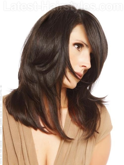 Timeless Long Layered Brunette Hairstyle For Long Faces