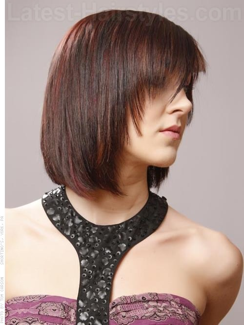 Crimson Crush Medium Shag with a Fringe Side View