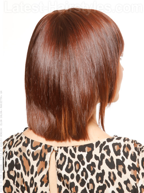 The Fringe Shiny Long Brunette Layered Bob Hairstyle Back View