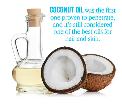 coconut oil for dry hair