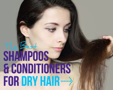 shampoos and conditioners for dry hair