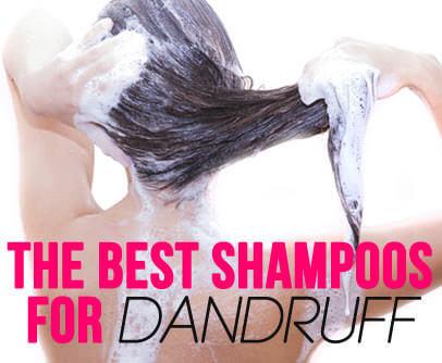 the best shampoos for dandruff