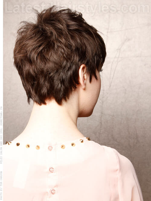 Soft Pixie Short Hairstyles For Fine Hair Back View