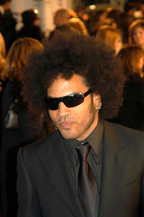 Lenny Kravitz Hair
