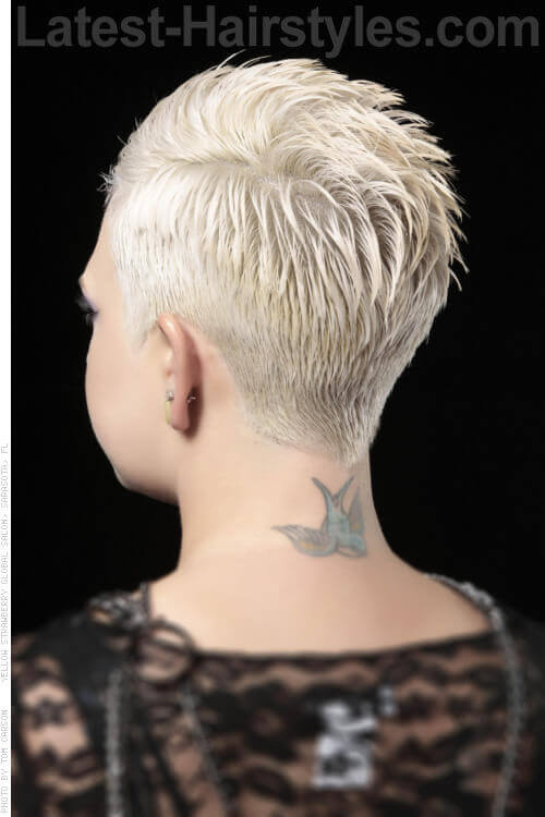 Short Stylish Blonde Hairstyle Back