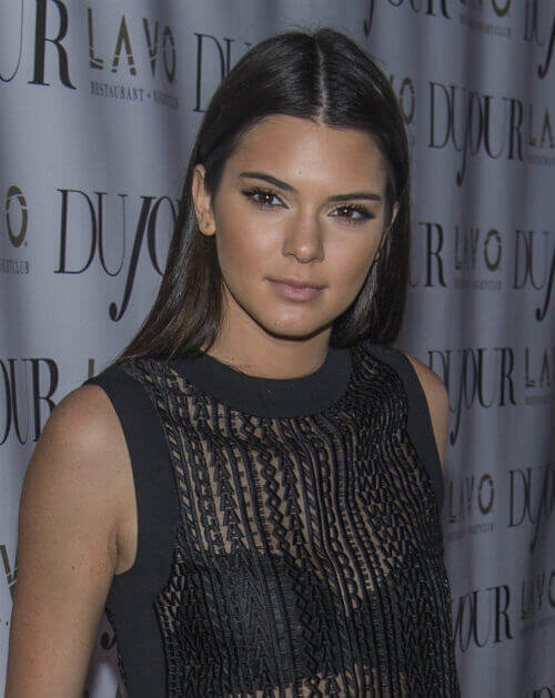 Kendall Jenner Long Smooth Hairstyle