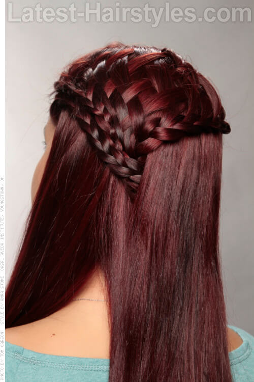 Burgundy Hair Color on Braided Hair Back