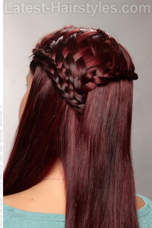 Burgundy Hair Color on Braided Hair Back