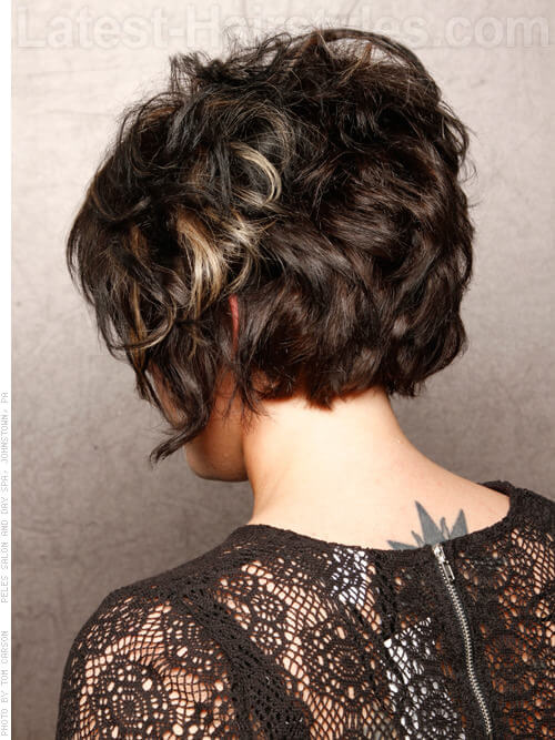 Deep Brunette with Silver Highlights Back