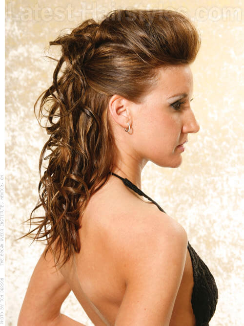 Curly Pulled Back Hairstyle with Volume
