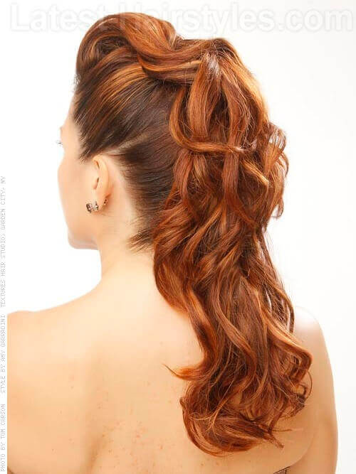 hair styles for pro curly hairstyles back view www pixshark 6584