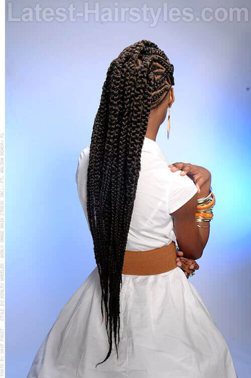 Super Long Braids Back View