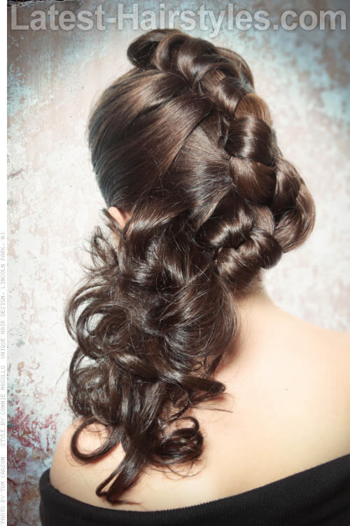 Modern Updo with Braids and Curls Back View