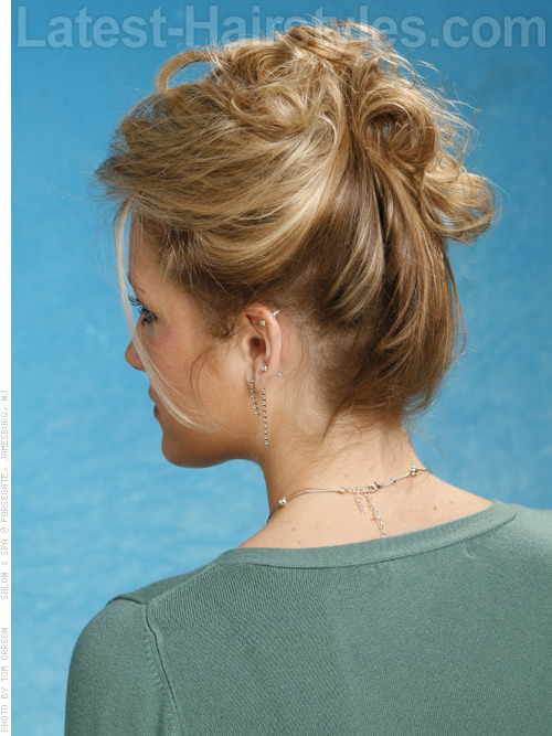 Classic Pinned Up Professional Hairstyle Back View