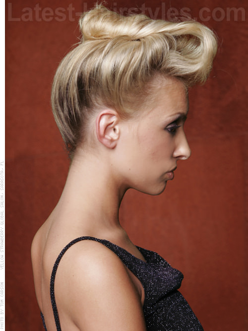 Gibson Girl Up Do Hairstyle Side View