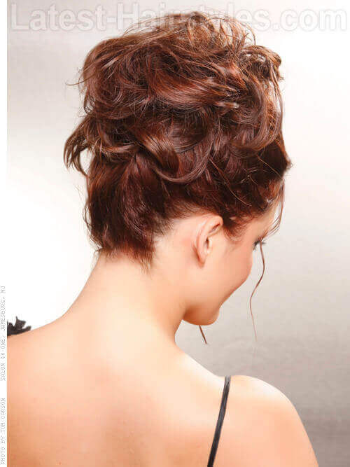 Casual Updo for Curly Hair Back