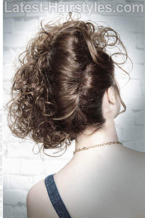 Curly French Twist Updo Back