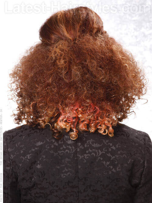 Half Updo for Curly Hair Back