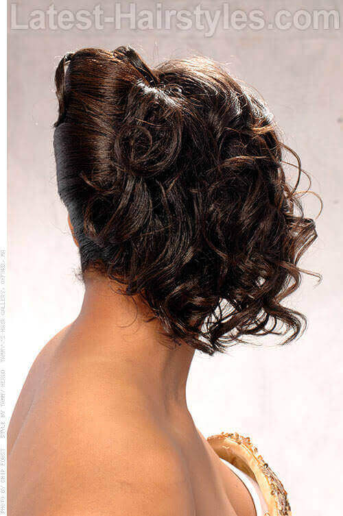 Inverted French Twist Hairstyle Back