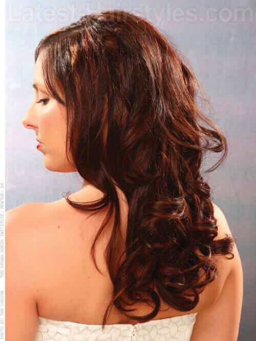 Long Hair with Auburn Highlights Back