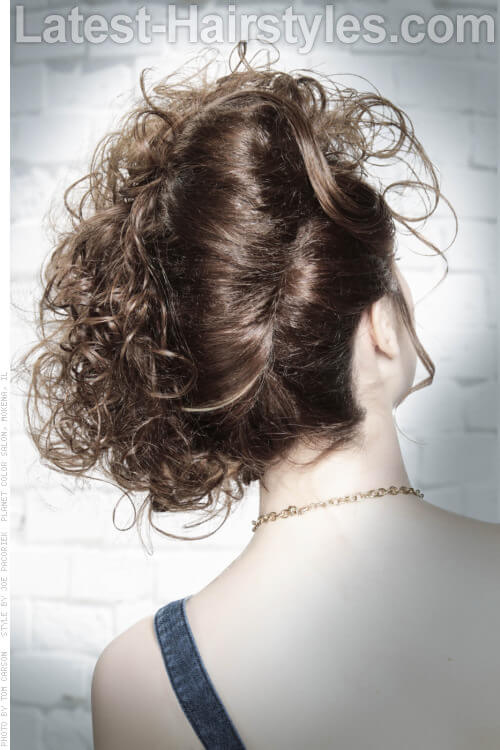 Funky French Twist Hairstyle Back