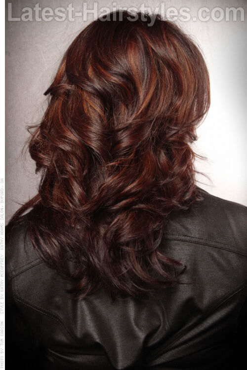 Long Brunette Hairstyle with Layers Back