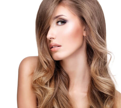 Natural Light Brown Ombre Haircolor