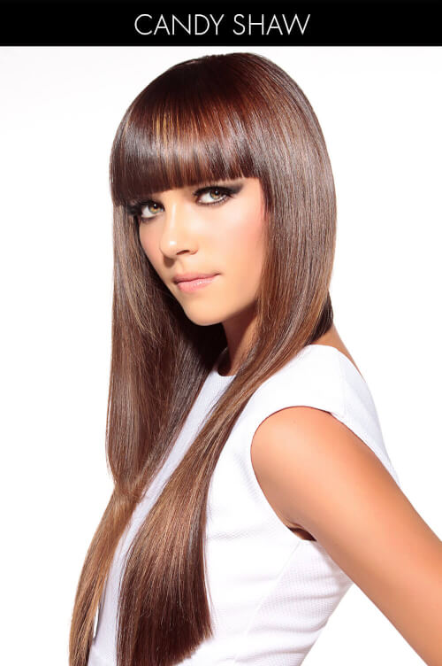 Brown Hair Color with Gold and Mahogany Highlights