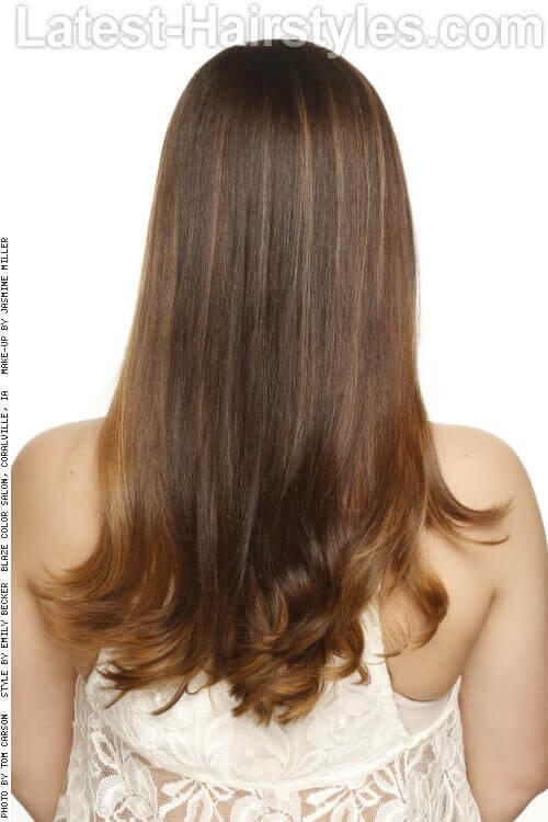 Long Sleek Haircut with Layers Back