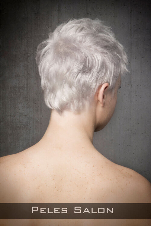 Pixie Hairstyle for Fine Hair Back