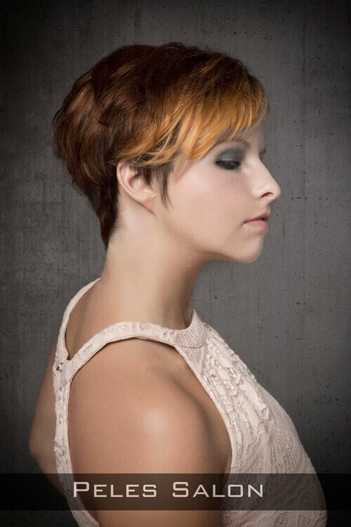 Short Hairstyle with Volume for Thick Hair Side