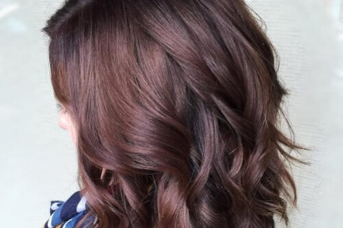 24 cutest peekaboo highlights youll ever see in 2018 chocolate spice burgundy hair color pmusecretfo Gallery