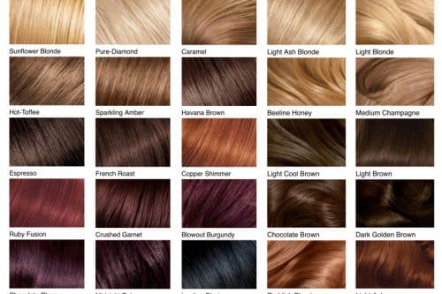 2019s Best Hair Color Ideas Are Right Here
