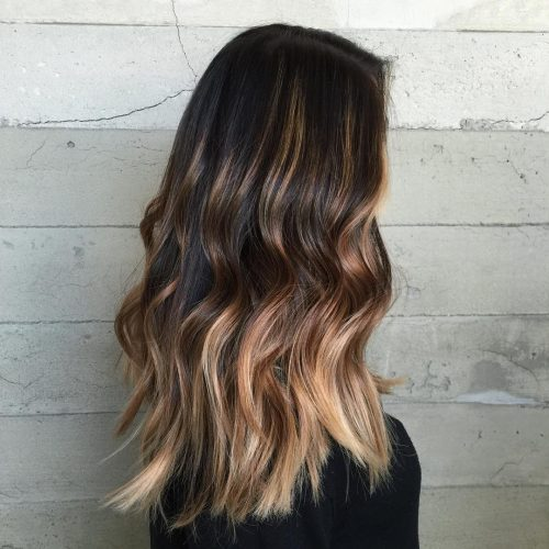 Long Hair with Honey Blonde Highlights